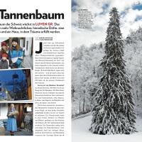 Oho Tannenbaum